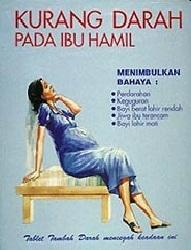 Makanan Untuk Mencegah Anemia (kurang darah) pada Ibu ...